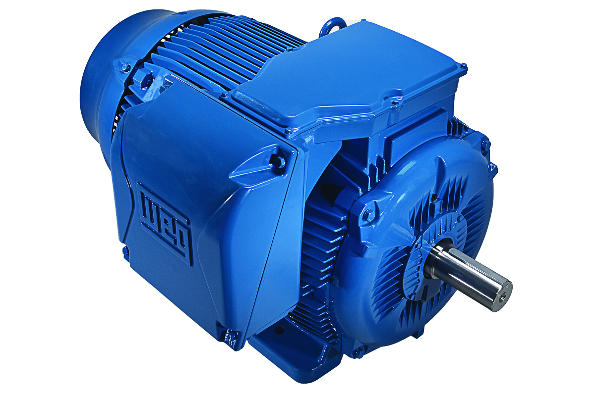 Armature electric limited specialists in electro for Electric motor repair company